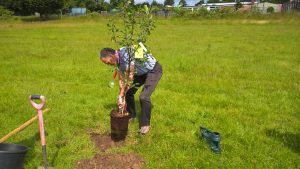 James Johnson & Co planting 3